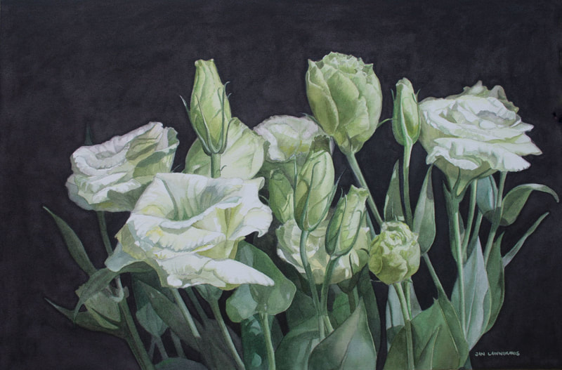 Green and white lisianthus, watercolour