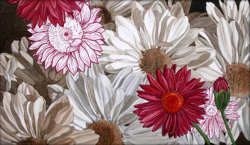 Monochromatic daisies, watercolour